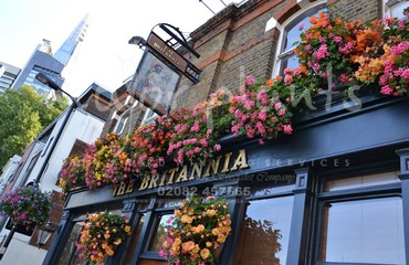 Hanging Basket Services for Pubs_image_003