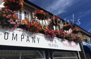 Hanging Basket Services for Pubs_image_007