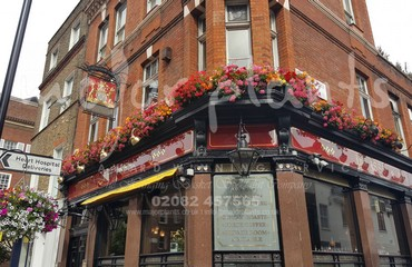 Hanging Basket Services for Pubs_image_015