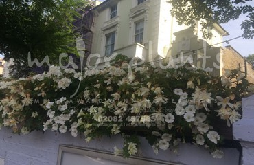 Hanging Basket Services for Pubs_image_021