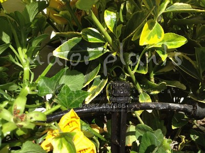 Irrigation Systems_image_008