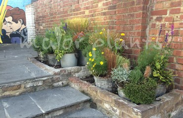 Pots and Troughs_image_016